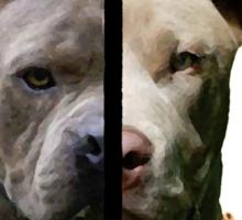 Pitbull Sides Sticker