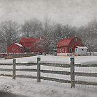 Winter At Buffalo Hollow Farm 2014 by Pat Abbott