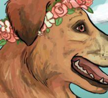 Graham's Dog Rescue Sticker