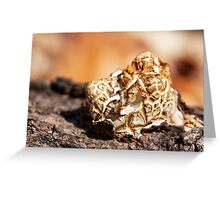 grilled marshmallow Greeting Card