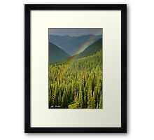 Rainbow and Sunlit Trees Framed Print