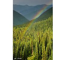 Rainbow and Sunlit Trees Photographic Print