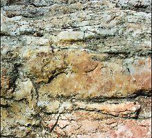 Anatomy of a Rock pt.1 by Heather Matthews
