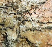 Anatomy of a Rock by Heather Matthews