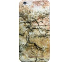 Anatomy of a Rock iPhone Case/Skin
