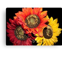 Sunflower Times 3 Canvas Print