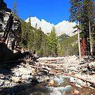 Canyon of King Creek by zumi