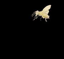 Bee by SOPHIAandLOLA