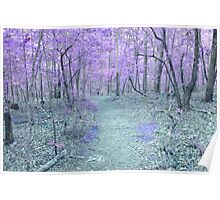 Fairy Walk Way Poster