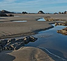 Seal Rock Beach Two by thomr