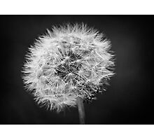 Just a Breath Away in Black and White Photographic Print