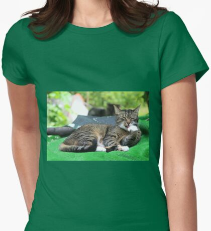 Mishu-Socks at His Ablutions Womens Fitted T-Shirt