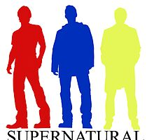 The Primary Supernatural by Haley Northrup