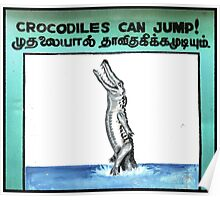 Crocodiles Can Jump Sign Poster