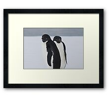 Penguin Pair Framed Print