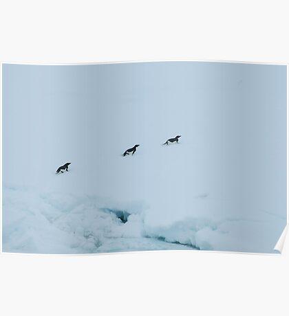 Penguin Chase Poster