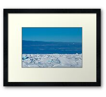 petrels on ice Framed Print