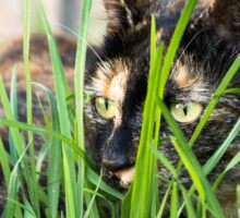Cat in grass (non-clothing products) Sticker