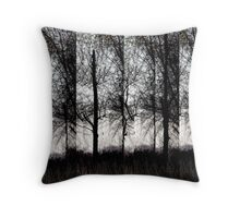 Don't Tell Me It's Too Late Throw Pillow
