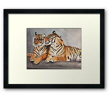 Pair of Tigers Framed Print
