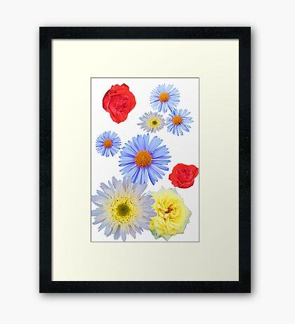 Colorful flowers like living Framed Print