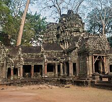 Ta Prohm by Vickie Burt