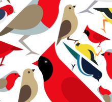 The birds from the colorful world Sticker
