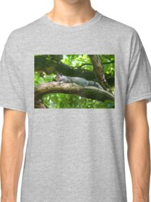 Grey Squirrel Classic T-Shirt