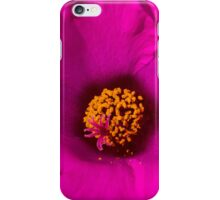 Happily, Vibrantly Pink With a Golden Yellow Center iPhone Case/Skin