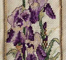 Iris - Flower - Cross Stitch  by Kim-maree Clark