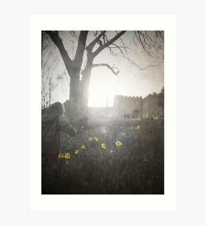 Daffodil Trail. Art Print