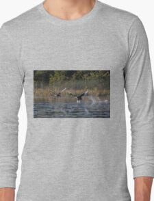 The Cygnets Are Flying  Long Sleeve T-Shirt