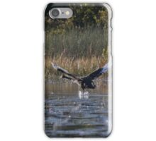 The Cygnets Are Flying  iPhone Case/Skin