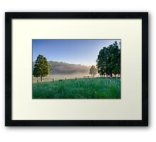 Translucent Sunrise Framed Print