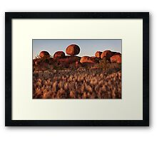 Ballancing  Act Framed Print