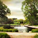 The Native Garden by Jessica Jenney