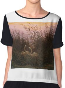 Swans among the Reeds at the first Morgenro by Caspar David Friedrich  Chiffon Top