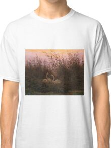Swans among the Reeds at the first Morgenro by Caspar David Friedrich  Classic T-Shirt