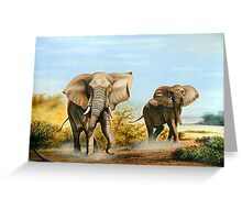 African Elephants threatening Greeting Card
