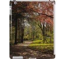 Maesteg Park. iPad Case/Skin