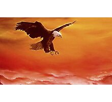 Soaring High Photographic Print