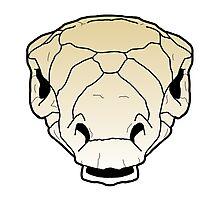Ankylosaur skull Photographic Print