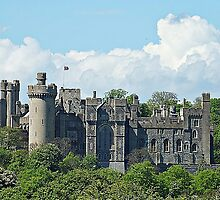 """ Arundel Castle"" by mrcoradour"