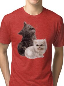 Cute Kittens Tri-blend T-Shirt