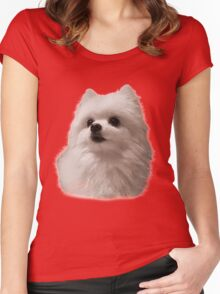 Gabe the Dog - Birthday Women's Fitted Scoop T-Shirt