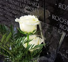 White Roses on the Vietnam Memorial in Washington D.C by ericakristen