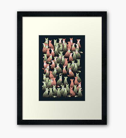 Sleeping foxes Framed Print