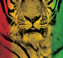 Tiger reggae Sticker