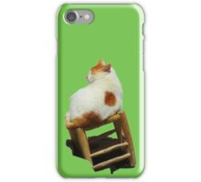 Cat playing perched iPhone Case/Skin