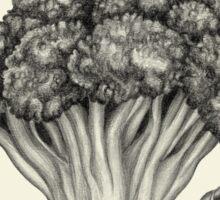 Mr. Broccoli Sticker